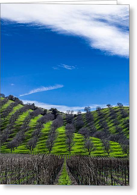 Hidden Valley Hills Greeting Card