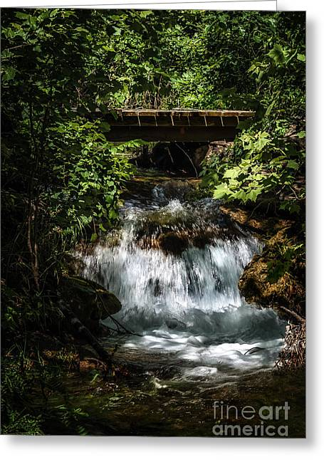 Hidden Waterfall At Chickasaw National Recreation Area Greeting Card