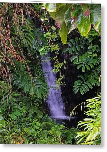 Small Hidden Waterfall  Greeting Card