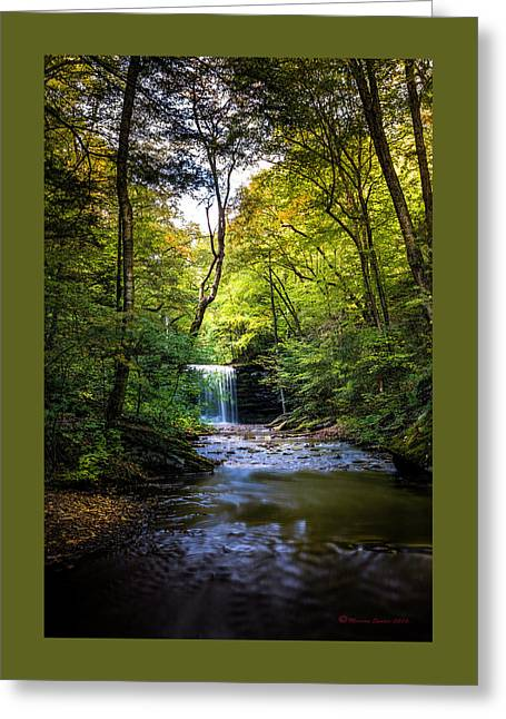 Hidden Wonders Greeting Card by Marvin Spates