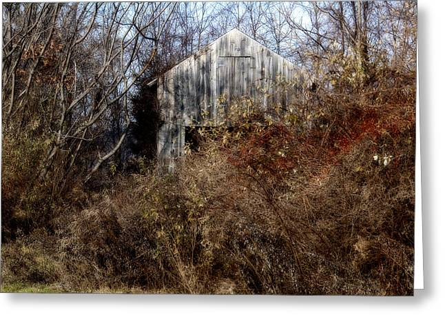 Hide A Barn Greeting Card by Ross Powell