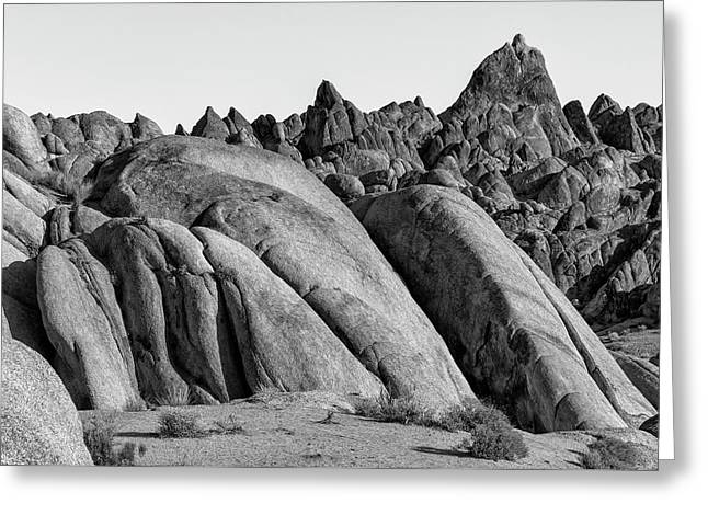 Greeting Card featuring the photograph Hideout by Jon Exley