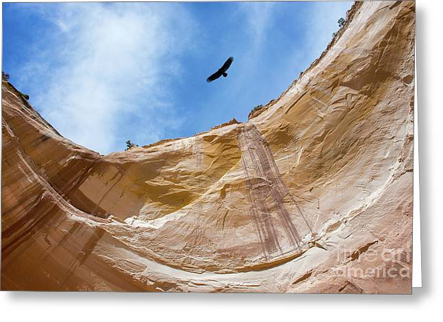 High Above Echo Amphitheater Greeting Card