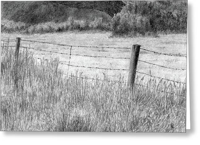 High Desert Hay Field Greeting Card by David King