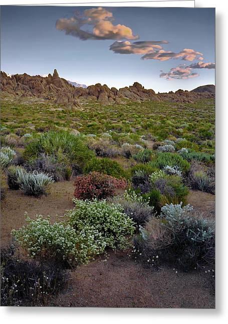 High Desert Hues Greeting Card