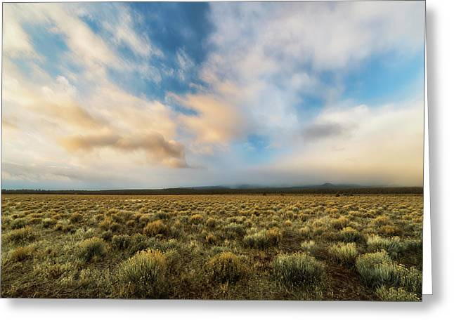 High Desert Morning Greeting Card by Ryan Manuel