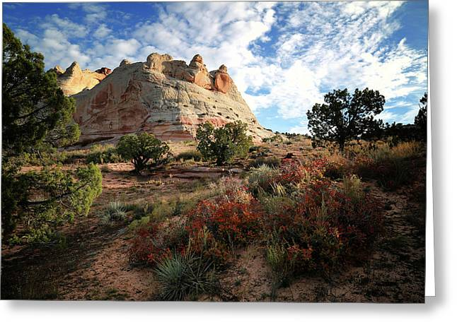 High Desert Paint Greeting Card by Gary Yost