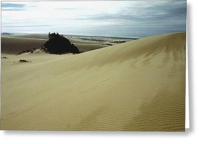 High Dunes 1 Greeting Card
