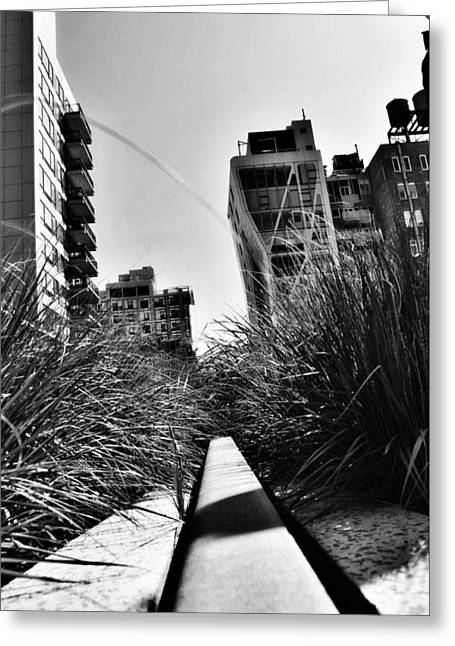 High Line Greeting Card by Pelo Blanco Photo
