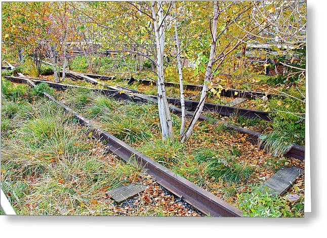 High Line Print 2 Greeting Card by Terry Wallace
