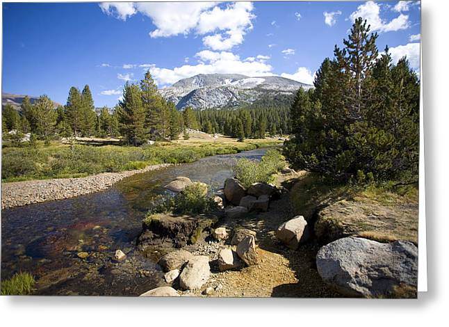 High Sierras Stream Greeting Card