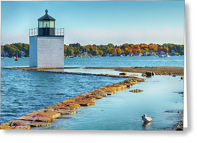 Greeting Card featuring the photograph High Tide At Derby Wharf In Salem by Jeff Folger