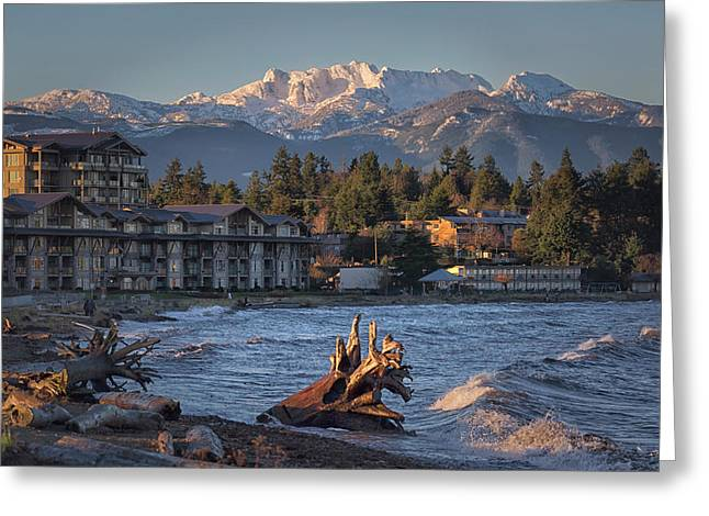 High Tide In The Bay Greeting Card by Randy Hall