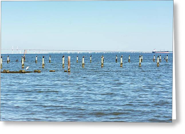 Greeting Card featuring the photograph Highland Beach On The Chesapeake by Charles Kraus