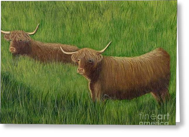 Greeting Card featuring the painting Highland Cows by Tracey Goodwin