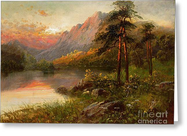 Highland Solitude Greeting Card by Frank Hider