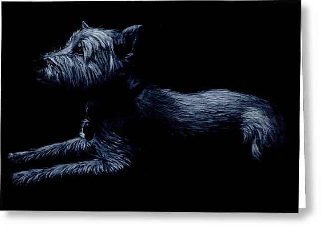 Highland Terrier Greeting Card