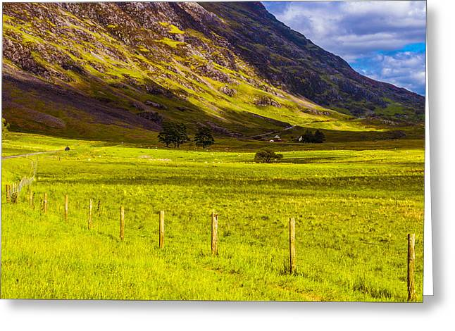 Highland Way I Greeting Card by Steven Ainsworth