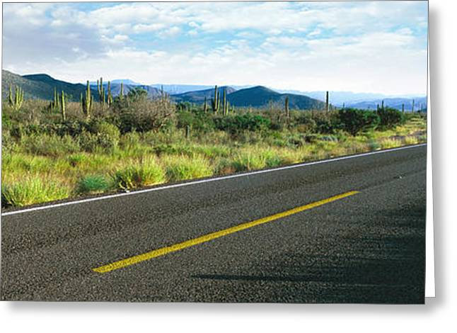Highway 1 Baja Trans-peninsula Highway Greeting Card by Panoramic Images
