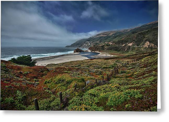 Highway Nr. 1 Flower Power - California Greeting Card by Andreas Freund