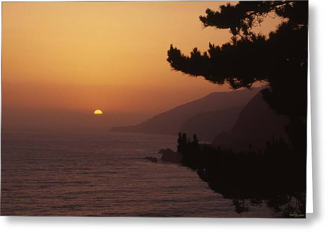 Highway One - Monterey County Greeting Card by Soli Deo Gloria Wilderness And Wildlife Photography