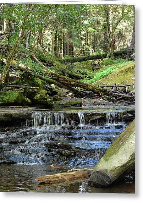 Hike In Slippery Rock Gorge Greeting Card