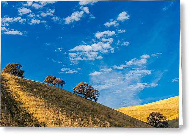 Hiking East Bay Hills Greeting Card