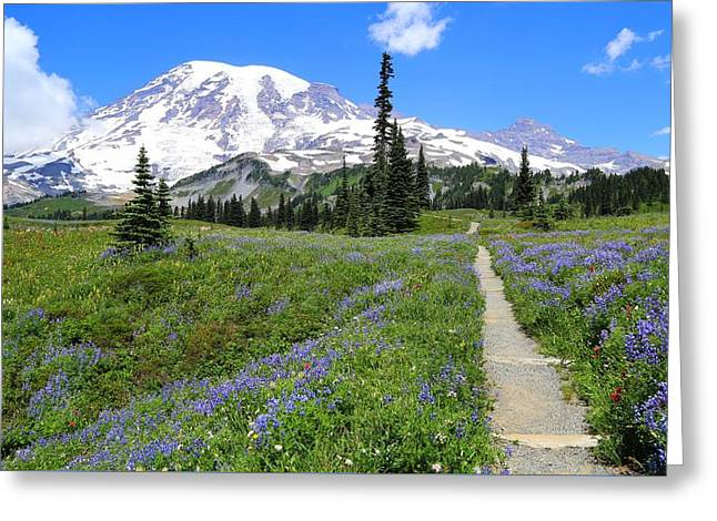 Hiking In The Wildflowers Greeting Card