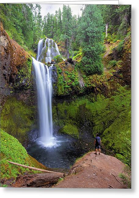 Hiking To Falls Creek Falls Greeting Card by David Gn