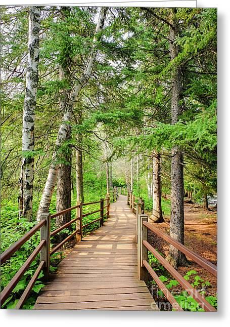 Hiking Trail Greeting Card