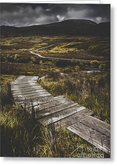 Hiking Trail Leading To Distant Australia Bushland Greeting Card by Jorgo Photography - Wall Art Gallery