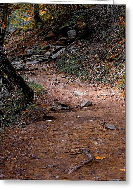 Sweat Greeting Cards - Hiking Trail to Abrams Falls Greeting Card by DigiArt Diaries by Vicky B Fuller