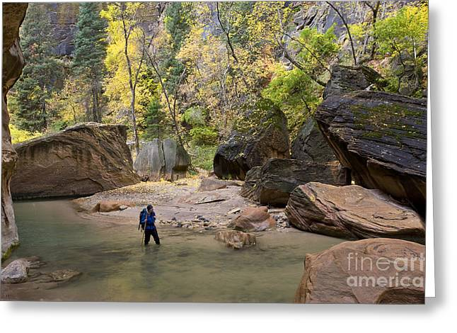 Hiking, Zion National Park Greeting Card by Howie Garber