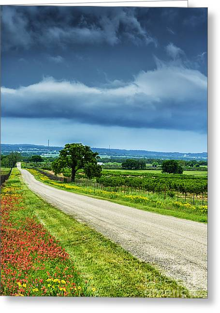 Hill Country Of Texas Greeting Card