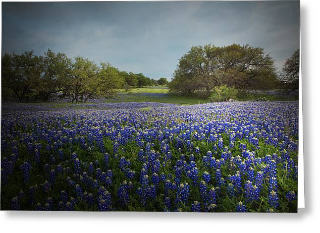 Hill Country Ranch Greeting Card