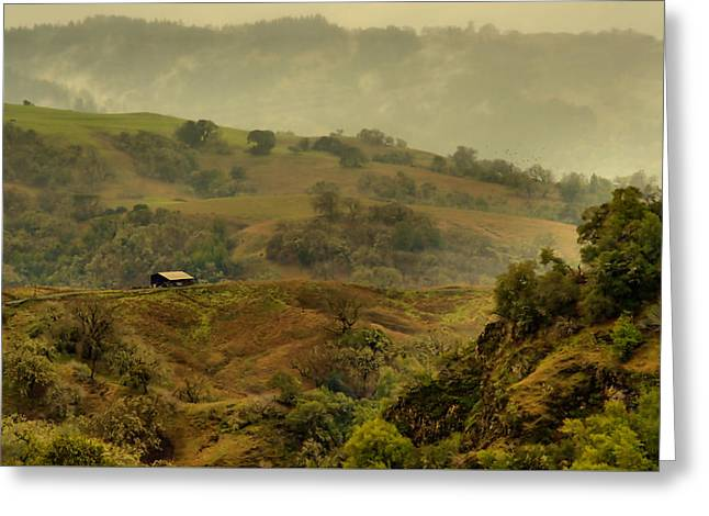 Hills Above Anderson Valley Greeting Card by Josephine Buschman