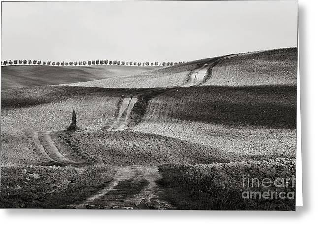 Hills From Val D'orcia, Tuscany Greeting Card