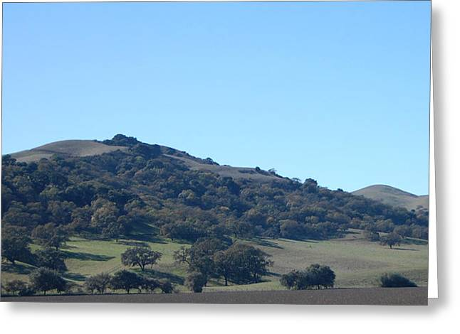 Hills Of Oak Greeting Card by Jean Booth