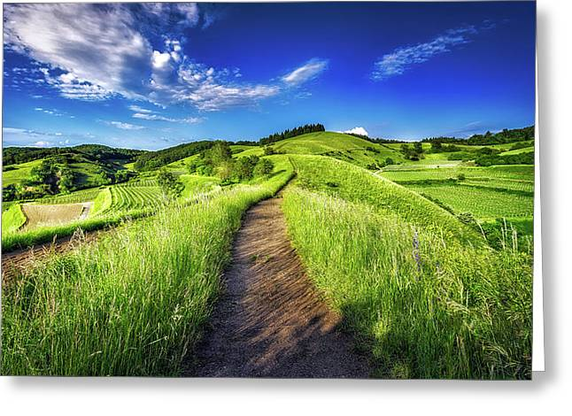 Hills Of Summer Greeting Card