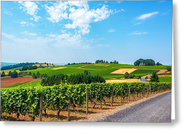 Hills Of Vineyards Greeting Card