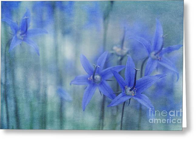 Hillside Blues Greeting Card by Priska Wettstein