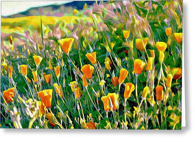 Hillside Poppies - Impressions Three Greeting Card