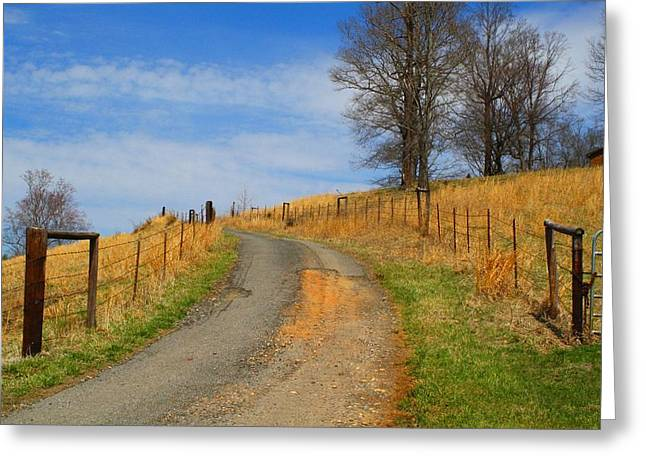 Hilltop Driveway Greeting Card by Kathryn Meyer