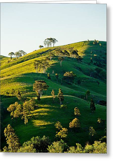 Hilltop Shadows Greeting Card by Az Jackson