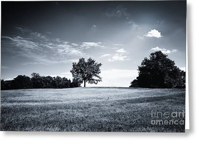 Hilly Black White Landscape Greeting Card
