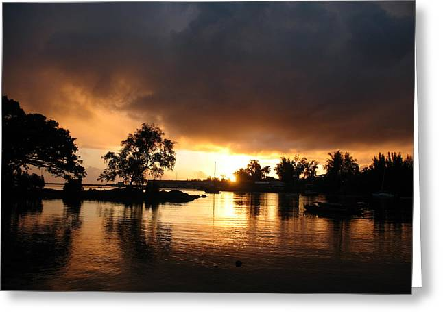 Hilo Gold Greeting Card by Ron Holiday Broomell