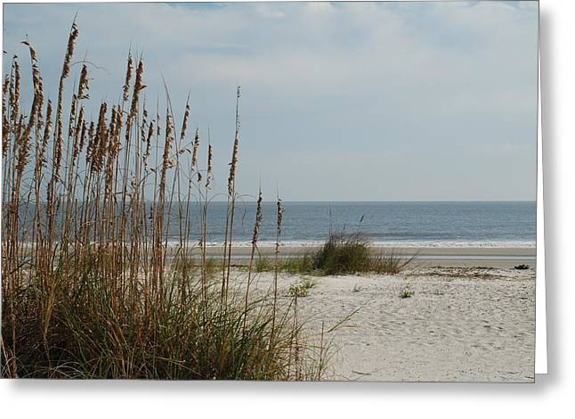 Hilton Head Beach Greeting Card