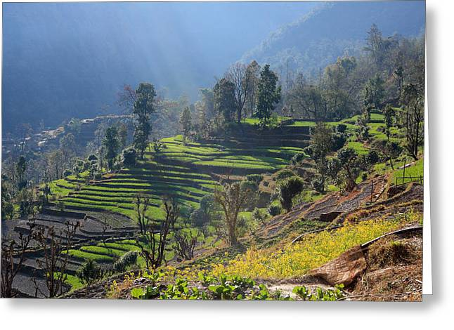 Himalayan Stepped Fields - Nepal Greeting Card
