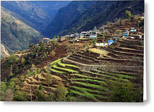 Himalayan Terraced Fields Greeting Card