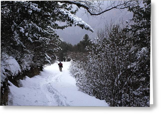 Himalayan Trail Greeting Card by Aidan Moran